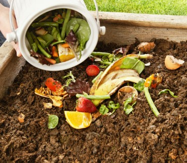 Dumping produce for composting